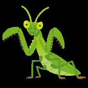 bug_kamakiri.png