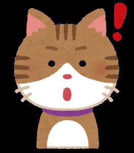 cat2_1_idea.png