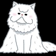 cat_persian.png