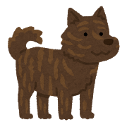 dog_kaiken.png