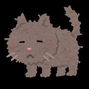 pet_cat_boroboro.png