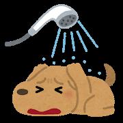 pet_ofuro_kirai_dog.png